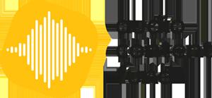 audio content fund 300